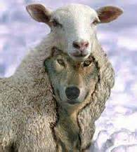 Wolf in Sheep's Clothing Picture