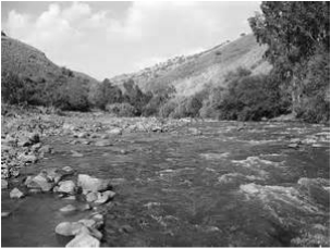 Restful rivers picture / Overcoming Exhaustion - an article by Deborah Perkins of HisInscriptions.com