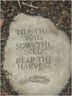 Till-Sow-Reap Photo