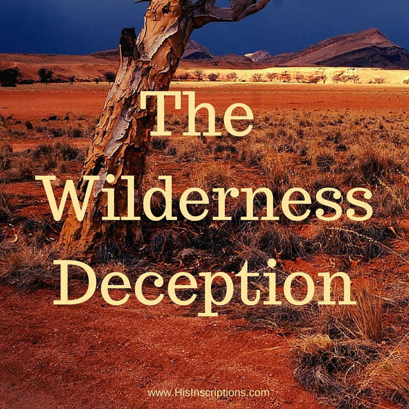 The Wilderness Deception: blog post by Deborah Perkins of HisInscriptions.com. Rejecting the lie that believers can be