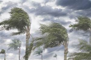 Faith in Life's Storms - a blog post by Deborah Perkins of HisInscriptions.com. Holding on when the winds of adversity blow strong!
