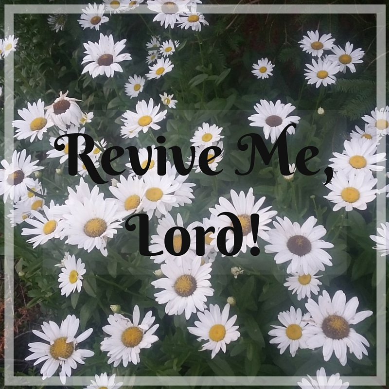 Revive Me, Lord! Being renewed by the Spirit of Christ through creation. A blog by Deborah Perkins of HisInscriptions.com